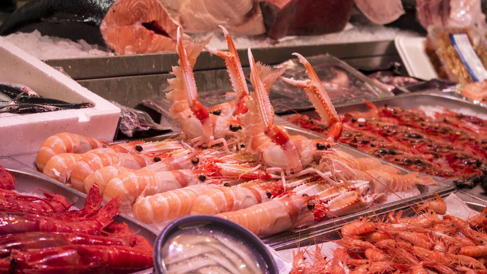 Negocio de pescados y mariscos, nombres para marisqueria