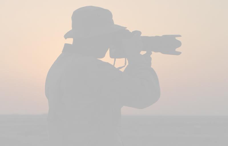 nombres para fotografos, nombres de fotografos